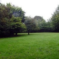 Beeches-cam-site-1