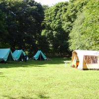 Beeches-campsite-7