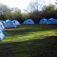 beeches-campsite-5