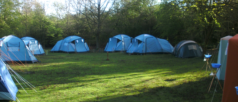tents-on-beeches